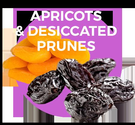 apricots-prunes